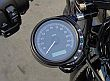SPEEDO SIDEMOUNT Sportster Custom and Forty-Eight , Dynas